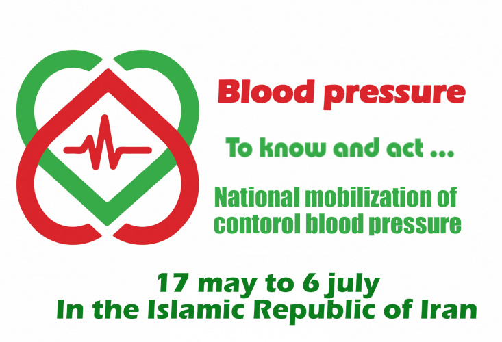 Designed and implemented high blood pressure control mobilization in Republic Islamic of Iran